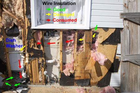 Photo: Damaged Power Cable to Dishwasher